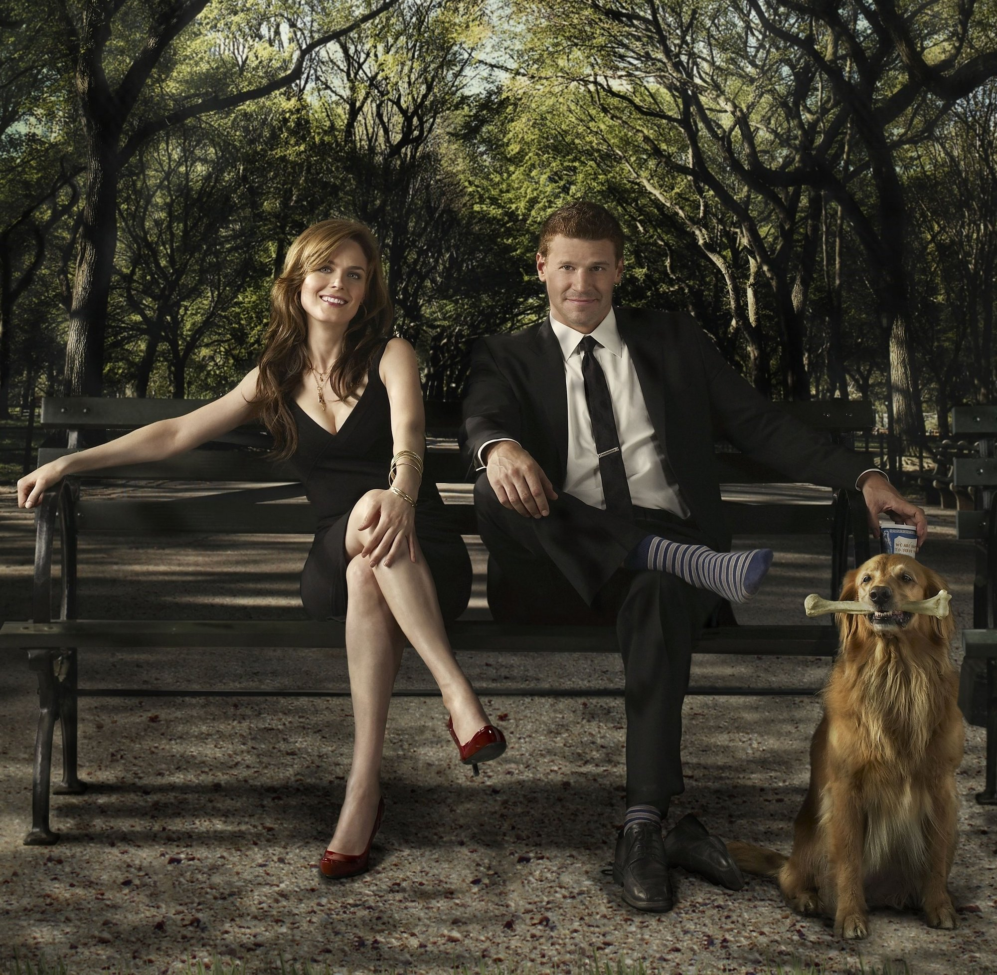 Brennan y Booth buscan a un asesino… por partes en »Bones»