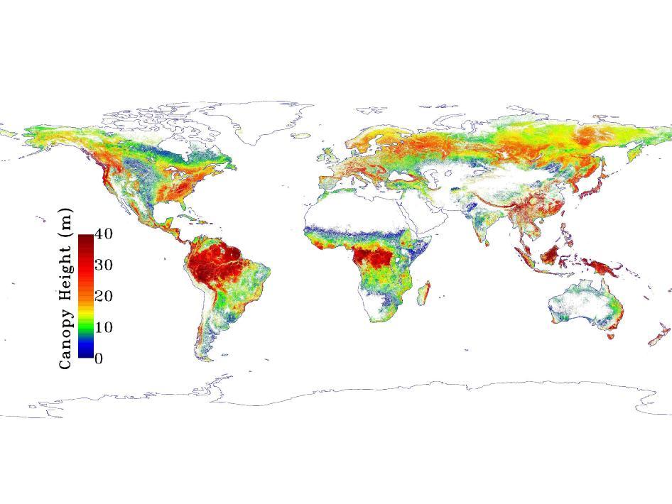 La NASA crea un mapa de la altura de los árboles elaborado desde el espacio