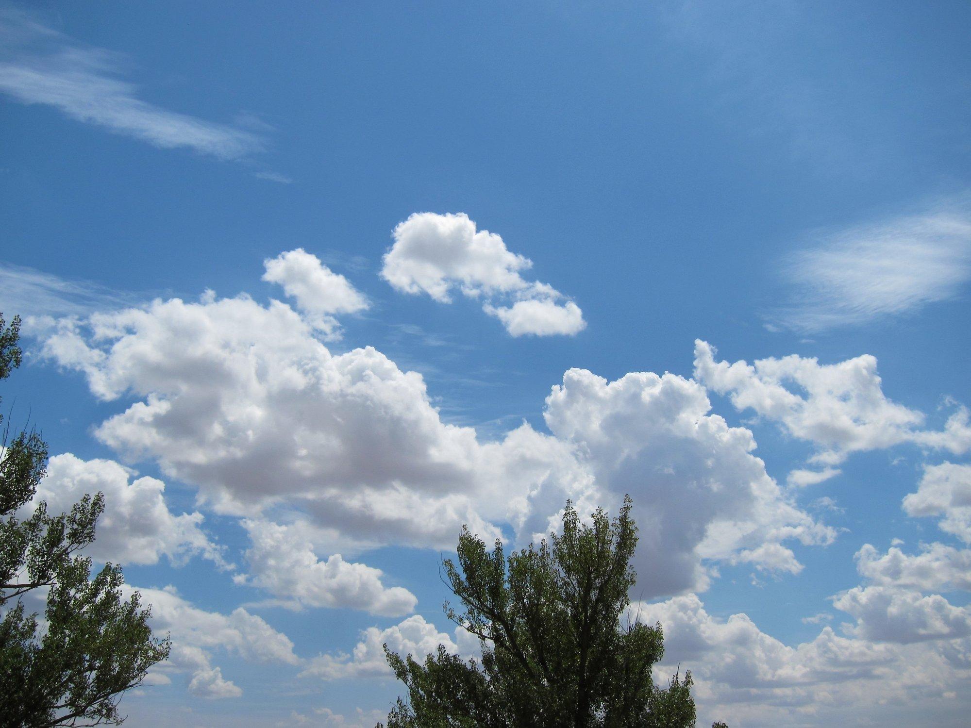 La Aemet prevé una primavera «calurosa» en Andalucía con temperaturas superiores a la media