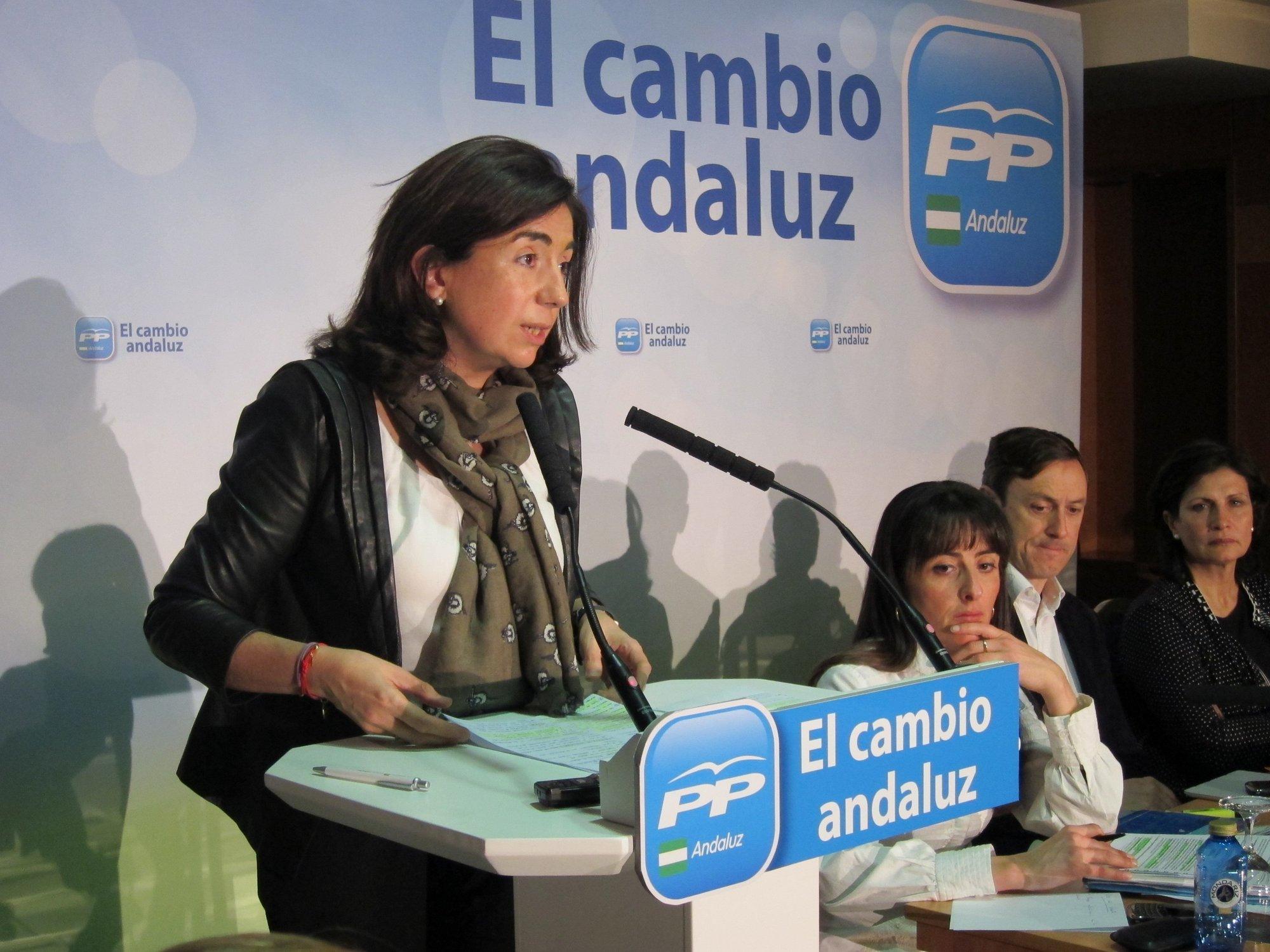 El PP considera que Andalucía precisa una buena ley educativa y un «compromiso serio» con los recursos