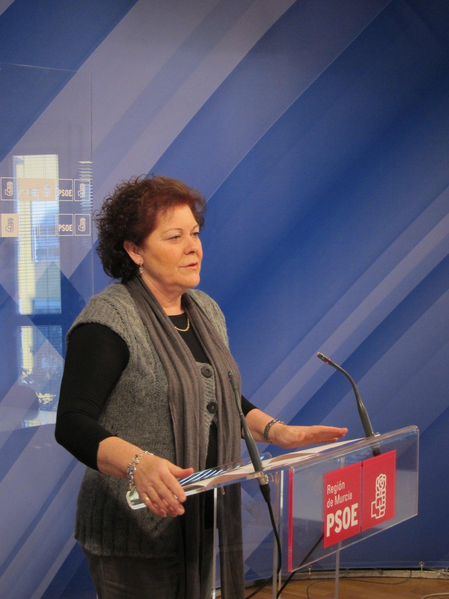 El PSOE sostiene que las propuestas de la consejera de Sanidad «sólo se basan en el recorte y el copago»
