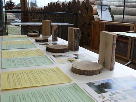 Las Casas del Parque de Castilla y León acogen más de 30 actividades durante estas fechas