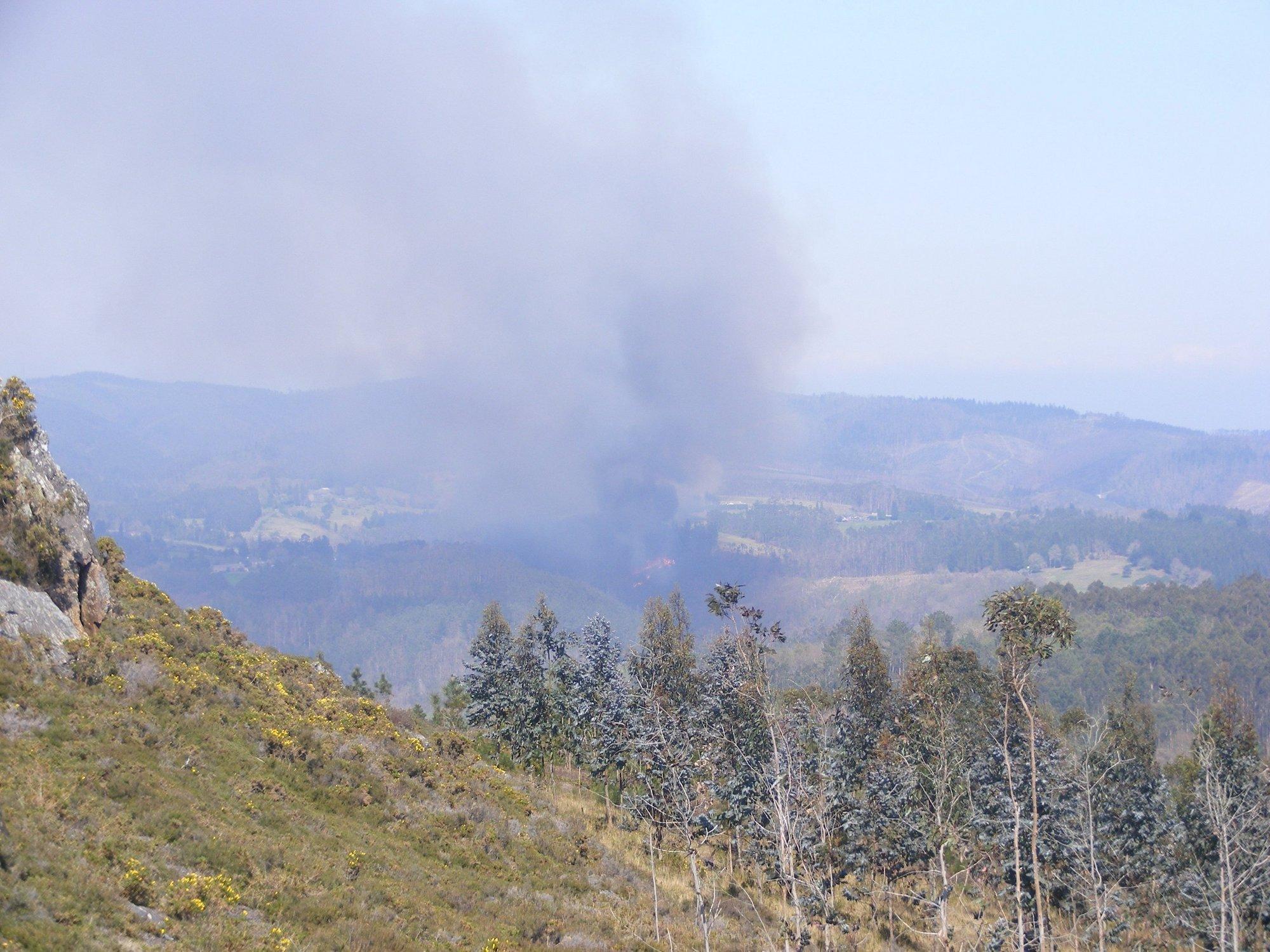 El Consello Consultivo de las Fragas do Eume convoca un pleno extraordinario tras el incendio en la zona