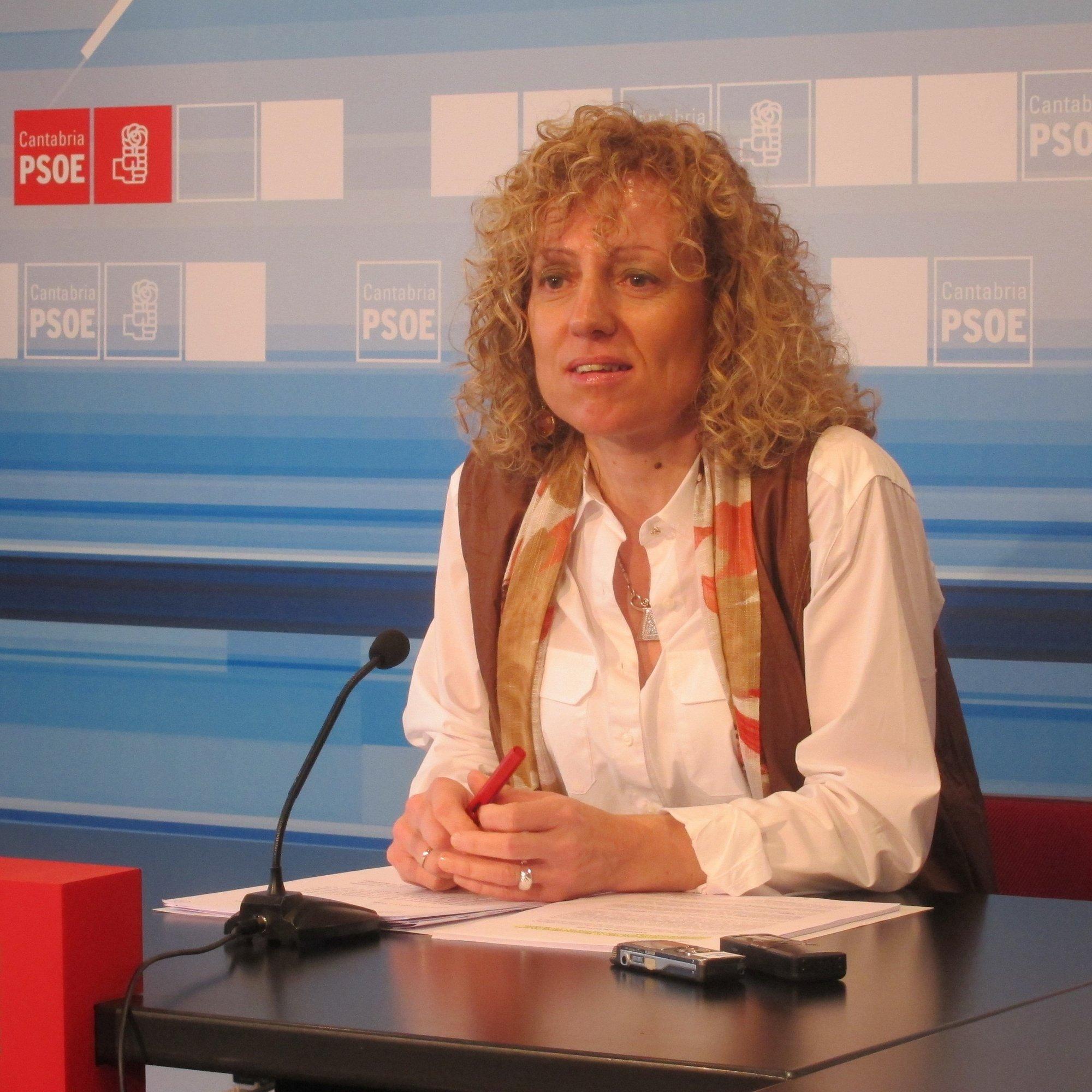 PSOE cree que Diego busca justificar con «mentiras» sobre Andalucía su «tijeretazo» en Cantabria al Estado de Bienestar
