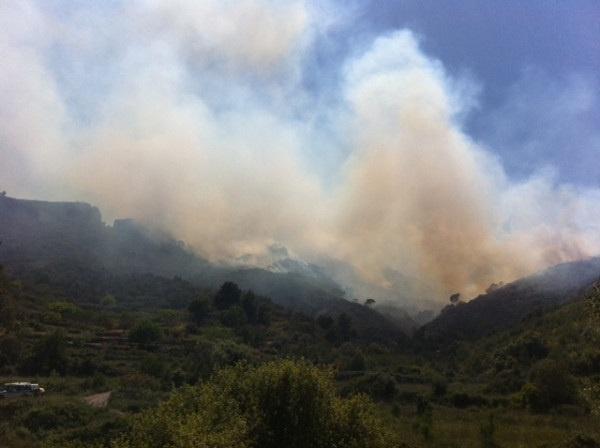 Puig prevé controlar esta tarde el frente activo del incendio de Rasquera