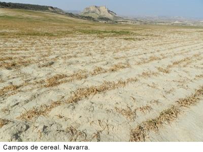 Las entidades bancarias colaborarán con el Gobierno extremeño para facilitar acceso a créditos de afectados por sequía