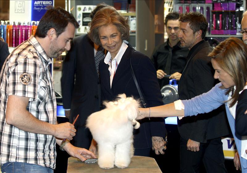 La Reina Sofía adopta a una perra abandonada que se llama «Paquita»