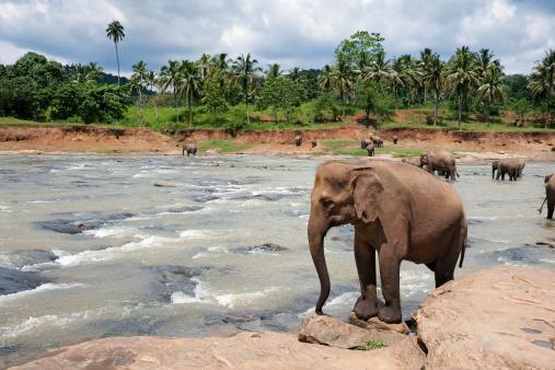 Descubre los 10 mejores destinos para visitar en 2013