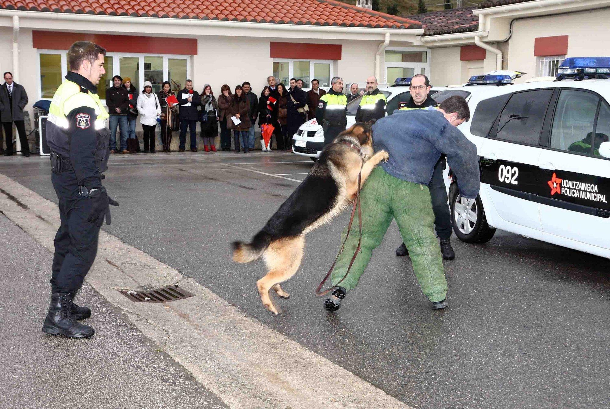 La Academia Galega de Seguridade convoca un curso de búsqueda y salvamento en grandes áreas con perros de rescate
