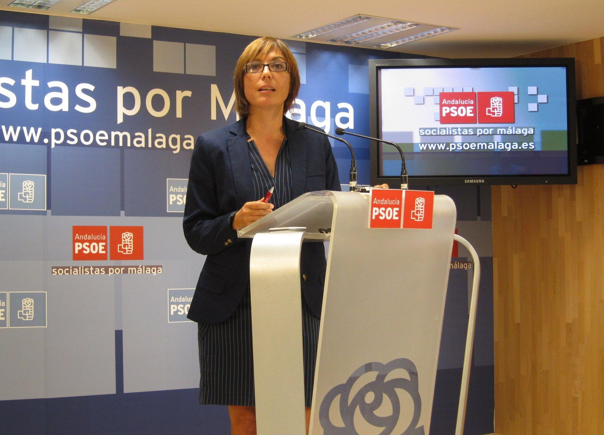 El PSOE pedirá al Pleno del Ayuntamiento de Málaga que se oponga a las nuevas tasas judiciales