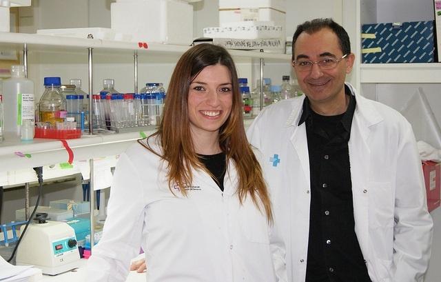 Descubren una proteína vinculada con el crecimiento del cáncer colorrectal
