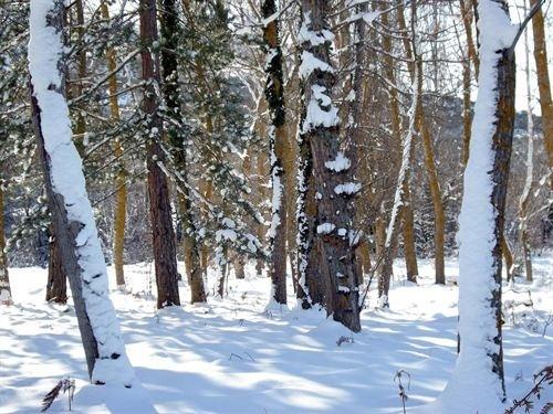 Activada la alerta amarilla por nieve en la sierra con un espesor de 8 centímetros