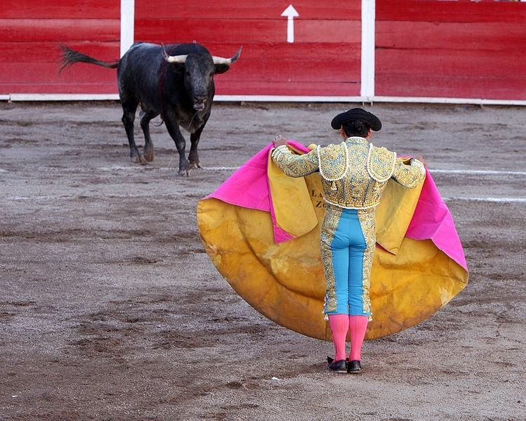 El Gobierno extremeño elaborará un Plan Regional de Promoción y Difusión del Mundo del Toro en Extremadura