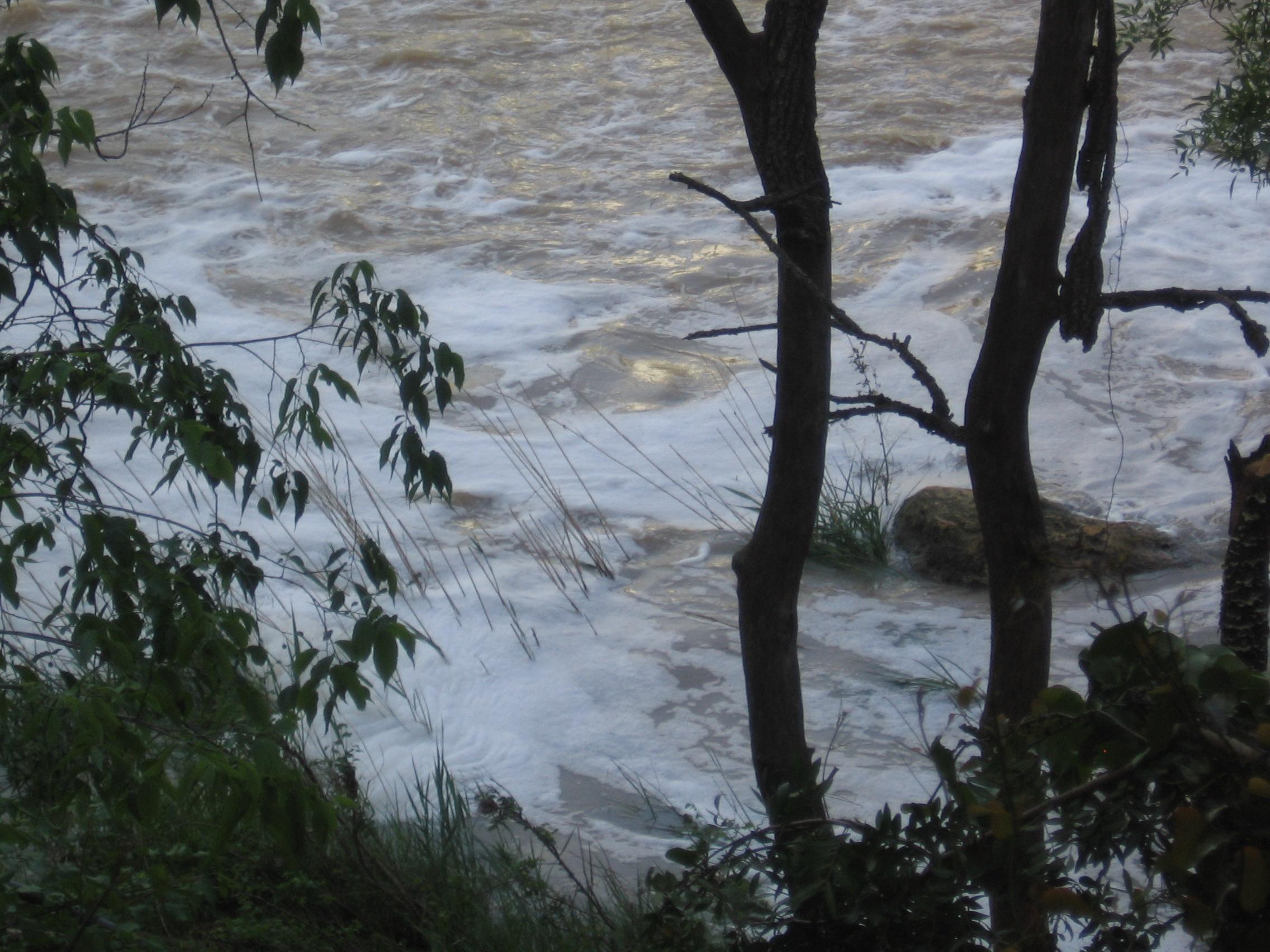 IULV-CA pide a Planas que ponga fecha a la comisión de seguimiento del programa de recuperación del Guadaíra