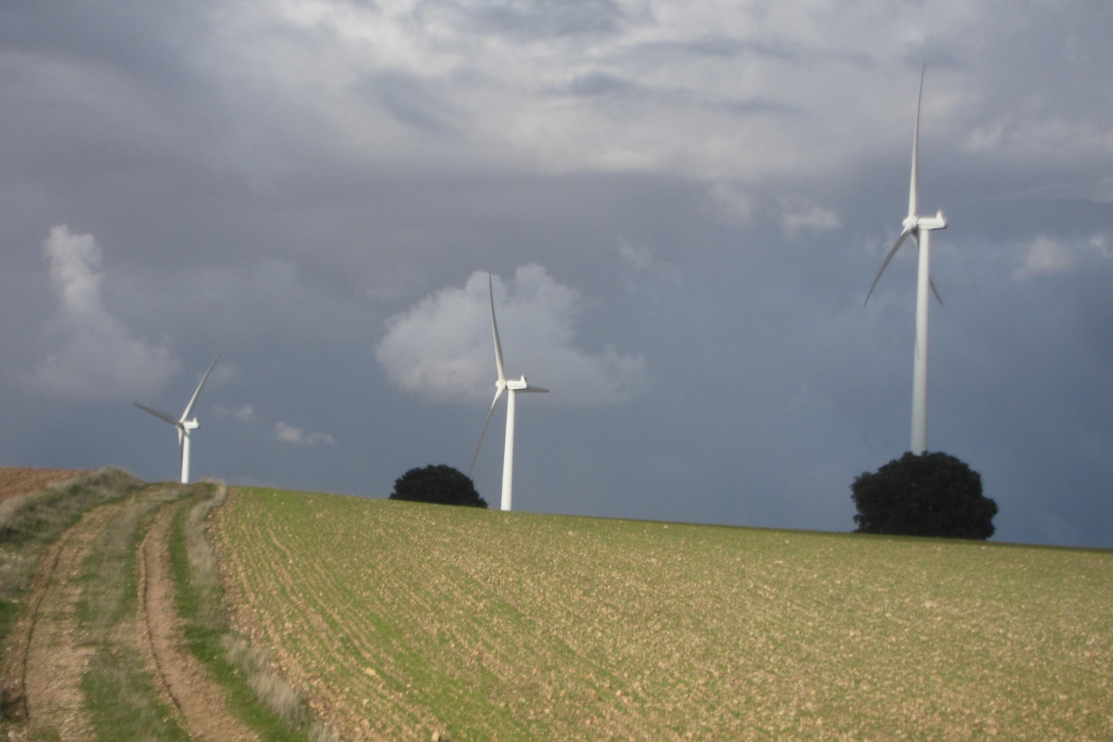 La Junta aprueba los proyectos de tres parques eólicos en las provincias de Cuenca y Albacete