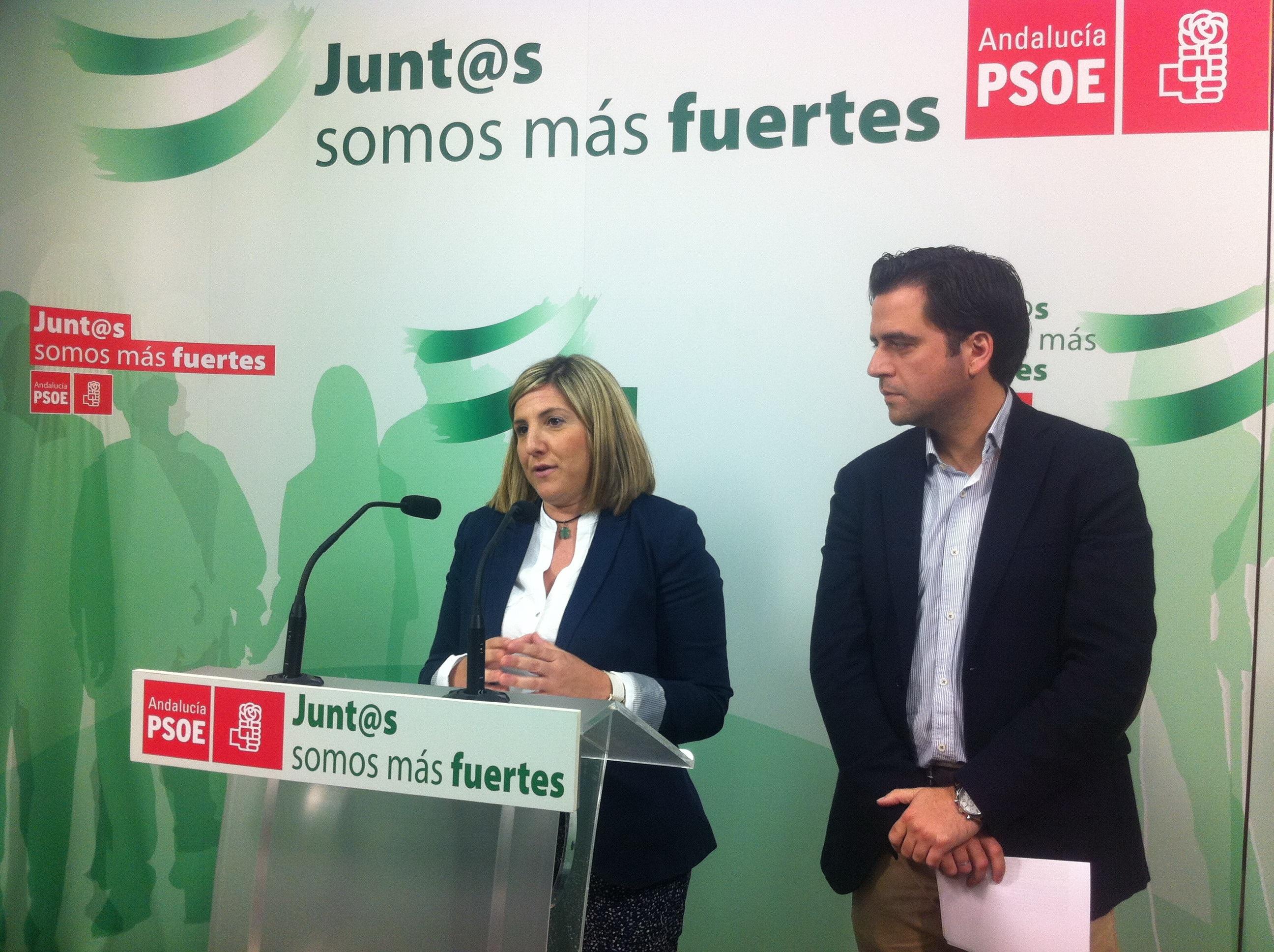 El PSOE va a pedir comisiones de investigación en el Ayuntamiento y el Congreso sobre la Zona Franca