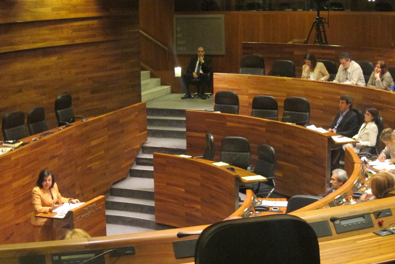 Álvarez defiende la «diligencia» con lo que ha actuado su departamento tras los problemas de Ascar
