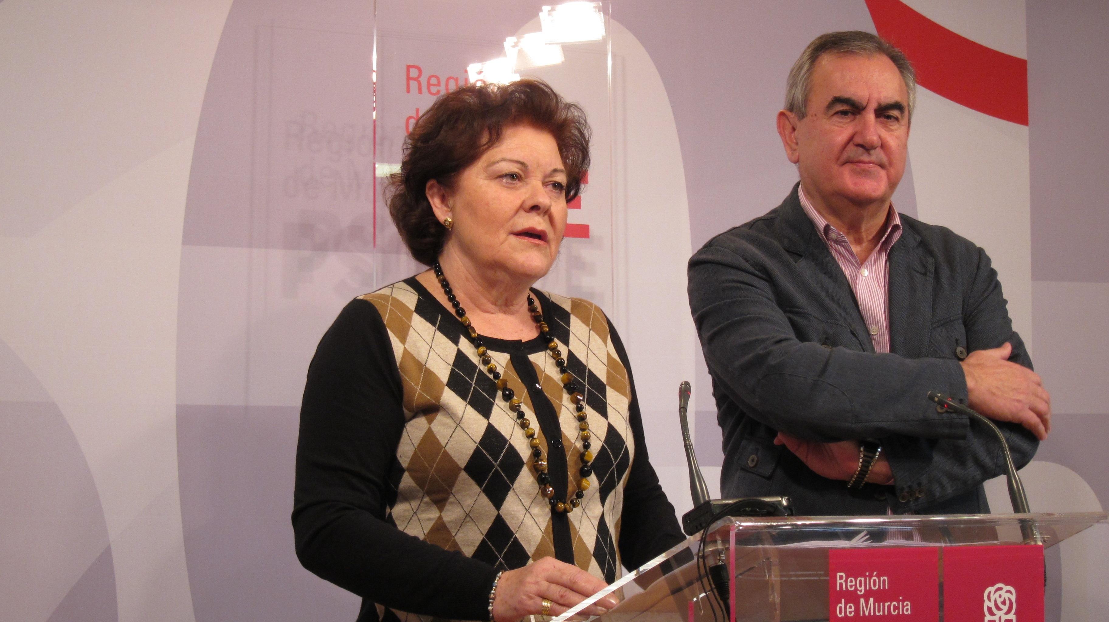 PSOE pide la dimisión de Palacios por incumplir leyes de Renta Básica y Dependencia y «dejar tiradas» a miles de persona