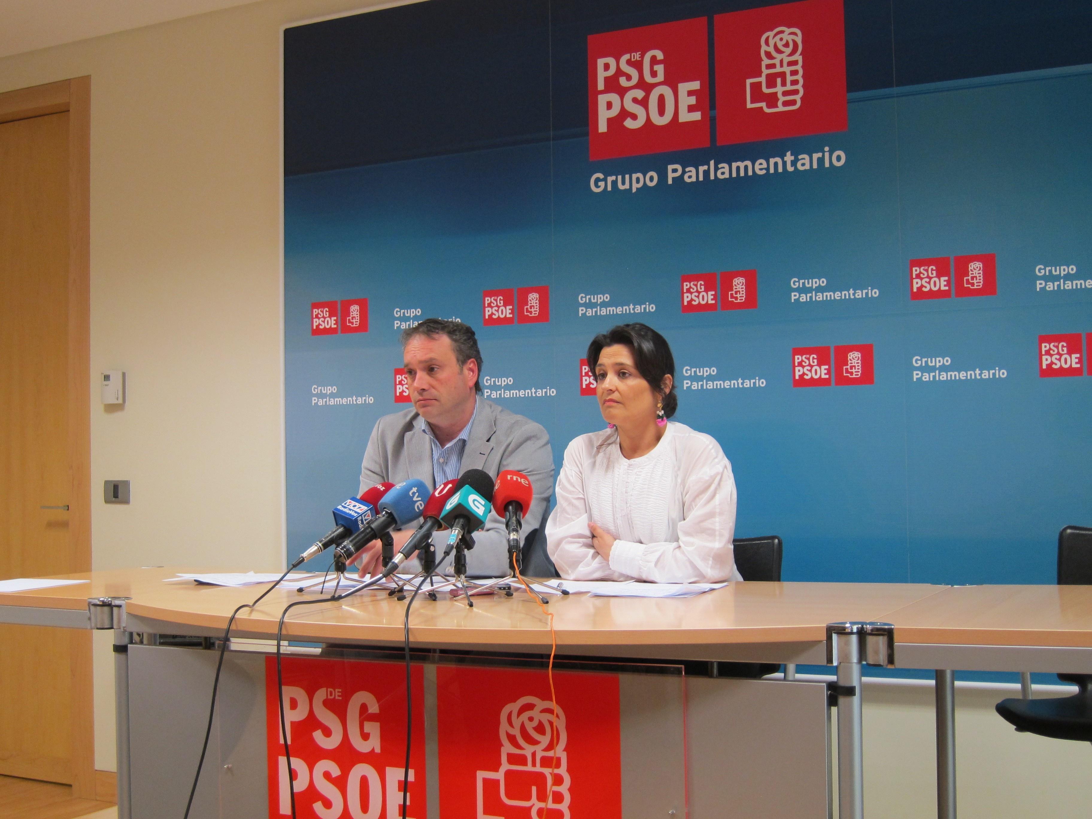 El PSdeG niega que exista un embargo de Ferraz a las cuotas de militantes, sino «un retraso» en abono a agrupaciones
