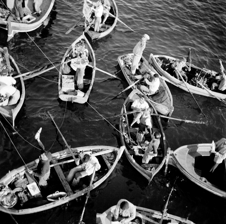 La exposición »Mirada a España» selecciona fotografías de Rauschenberg y Albers