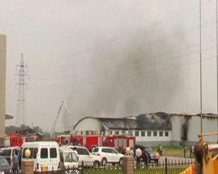 Detienen un responsable del matadero chino donde murieron 120 personas en un inciendio