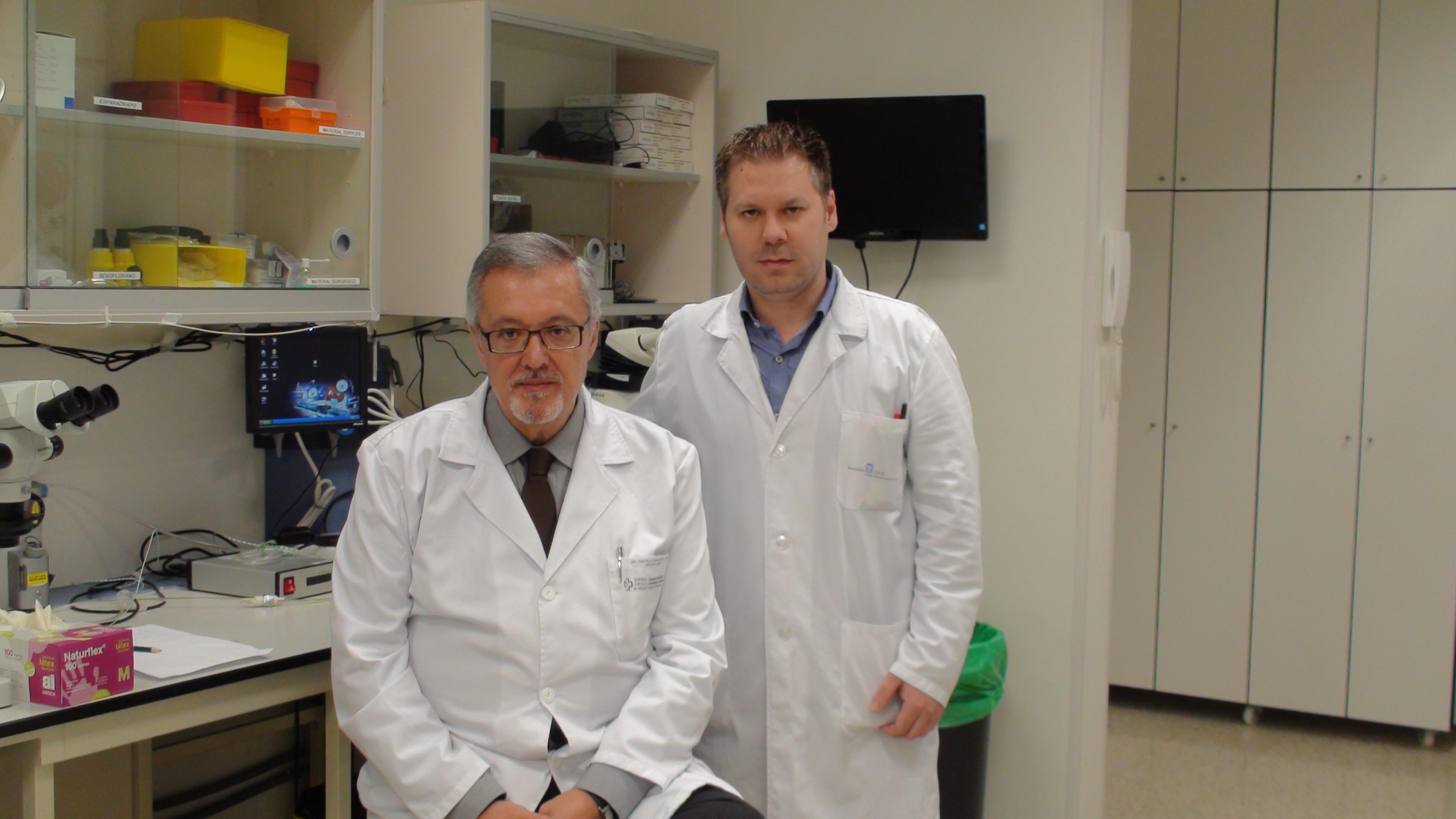 Investigadores demuestran que el aumento de una proteína de la sangre indica mayor daño cerebral tras un ictus