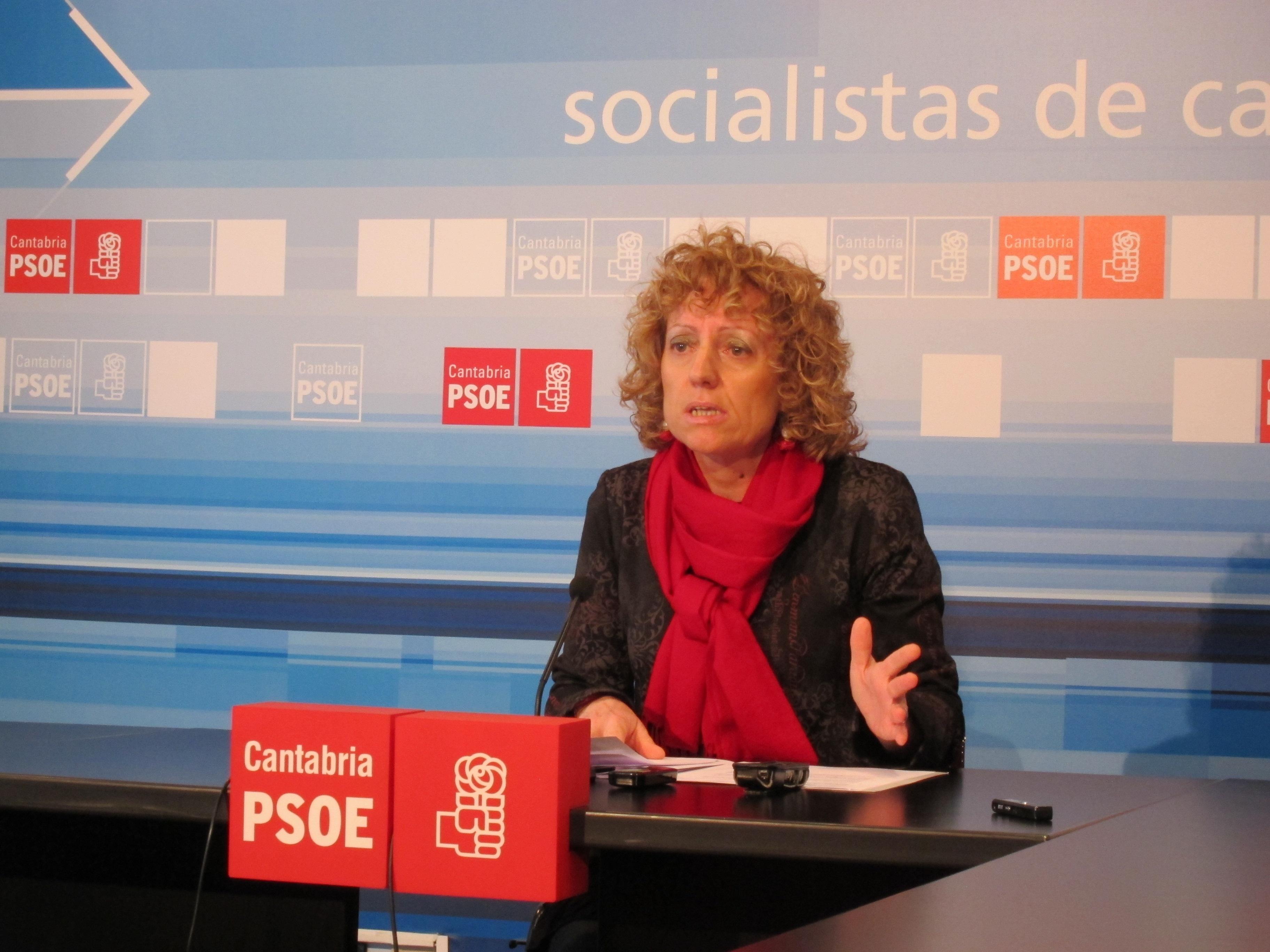 PSOE pide una acción urgente de los Gobiernos central y regional para salvar los 364 puestos de trabajo de Sniace
