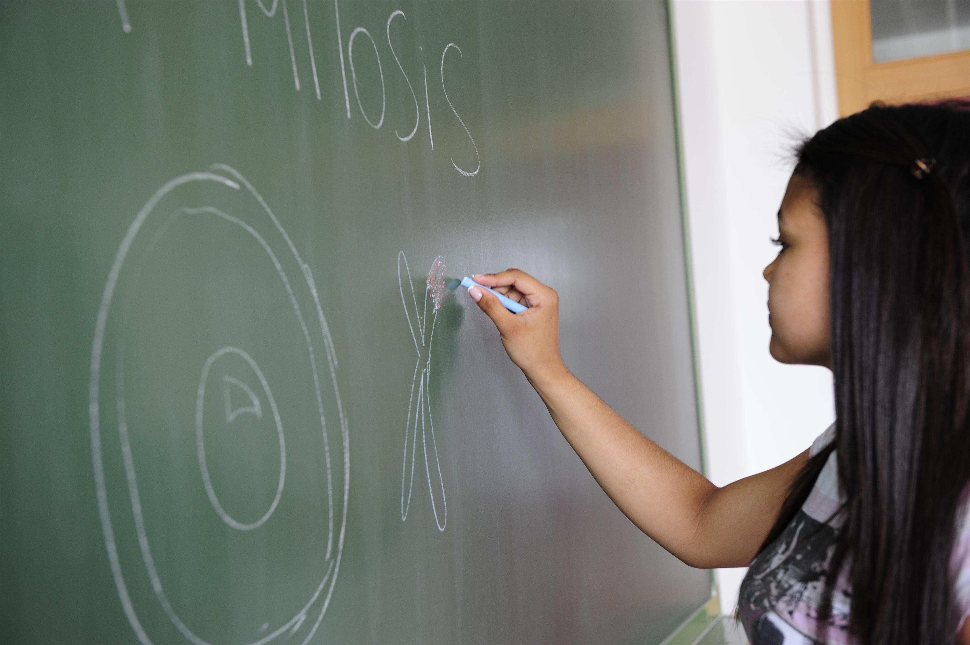 El curso 2013-14 comenzará el 9 de septiembre en Infantil y Primaria y el 16 del mismo mes en Secundaria