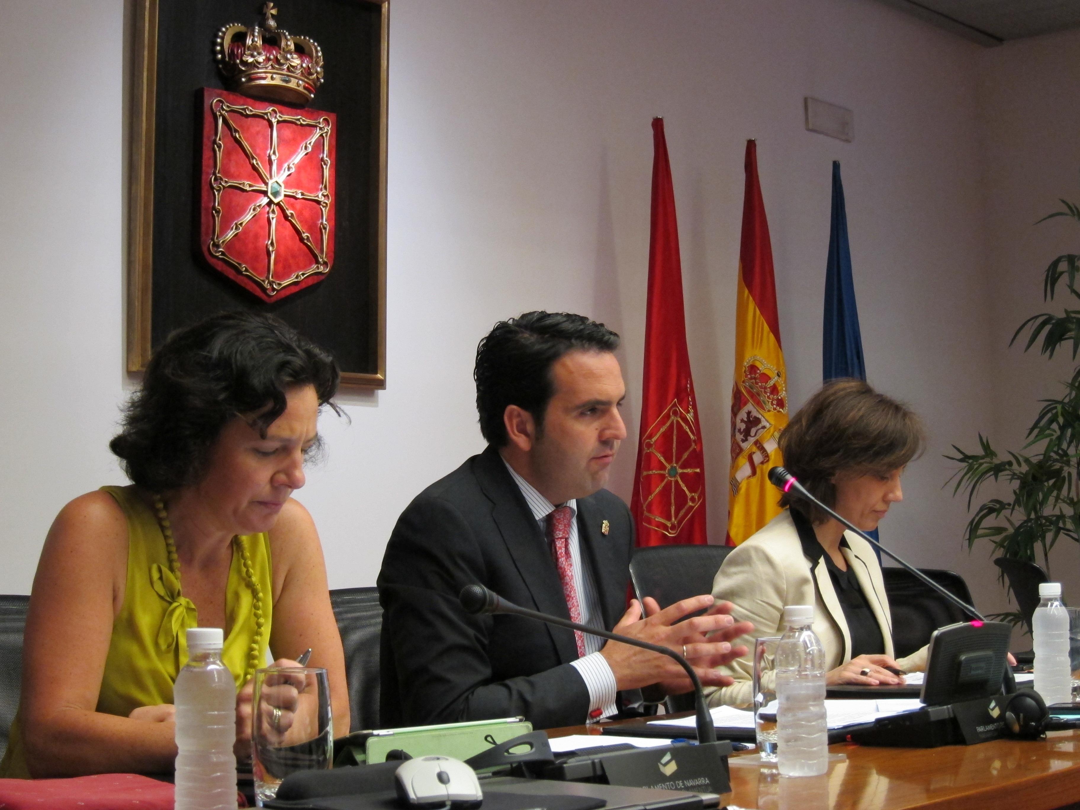 El Gobierno foral prevé aprobar la redacción final de la nueva ley contra la violencia de género en abril de 2014