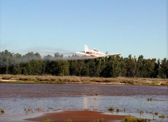 Comienza el tratamiento larvicida aéreo de refuerzo en 450 hectáreas de marisma mareal de difícil acceso