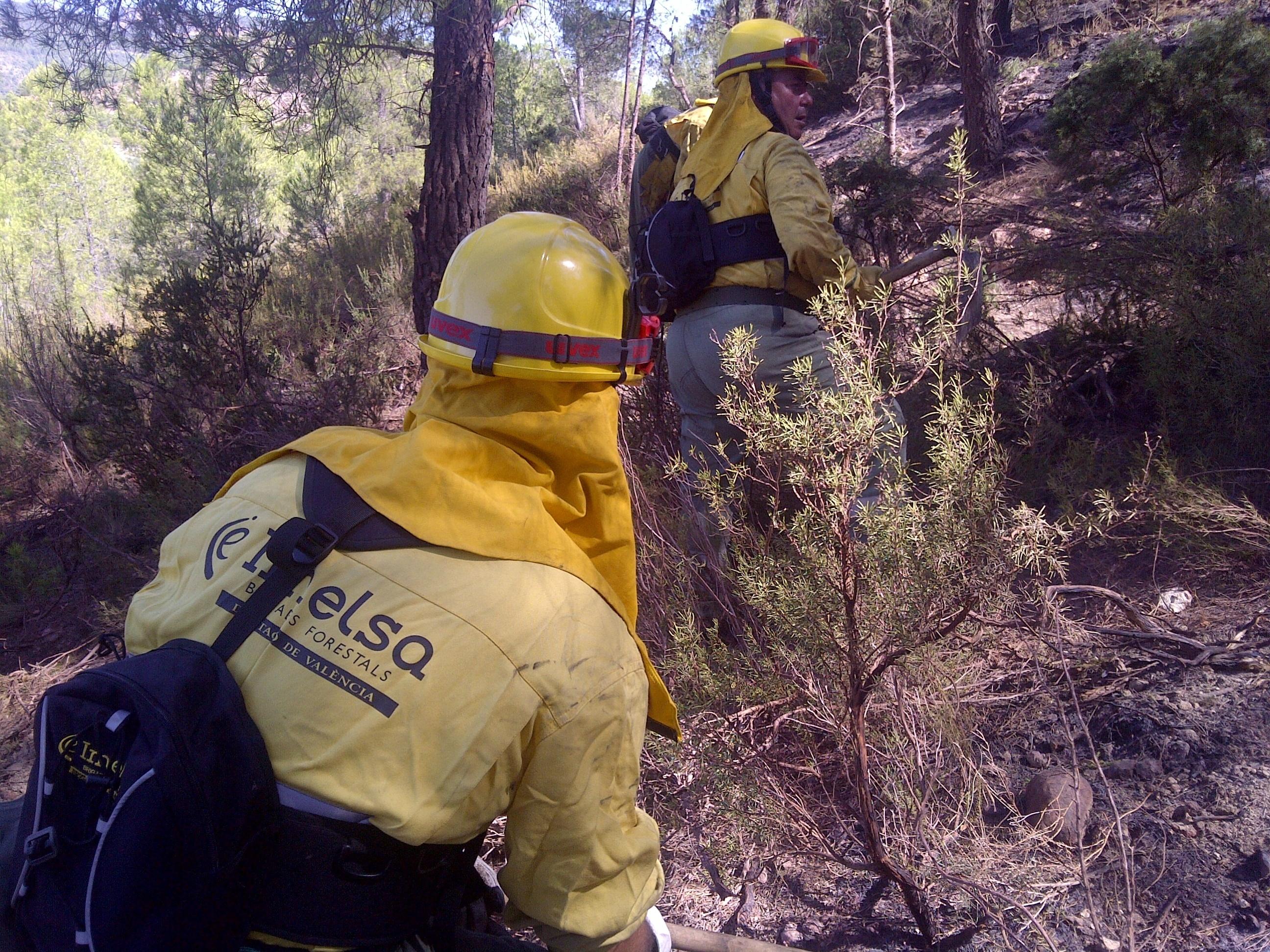 La Generalitat mantiene la preemergencia por riesgo de incendios forestales en toda la Comunitat Valenciana