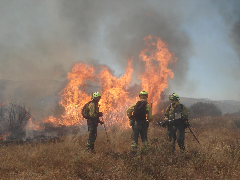 PSOE pide que Cañete comparezca por la mala prevención de incendios