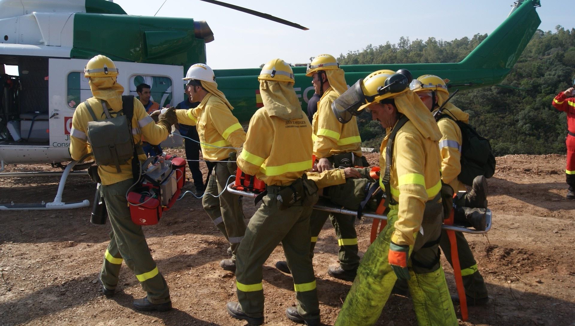 Afectadas 1.165 hectáreas por incendios forestales en lo que va de año, un 85% menos que la media de la última década