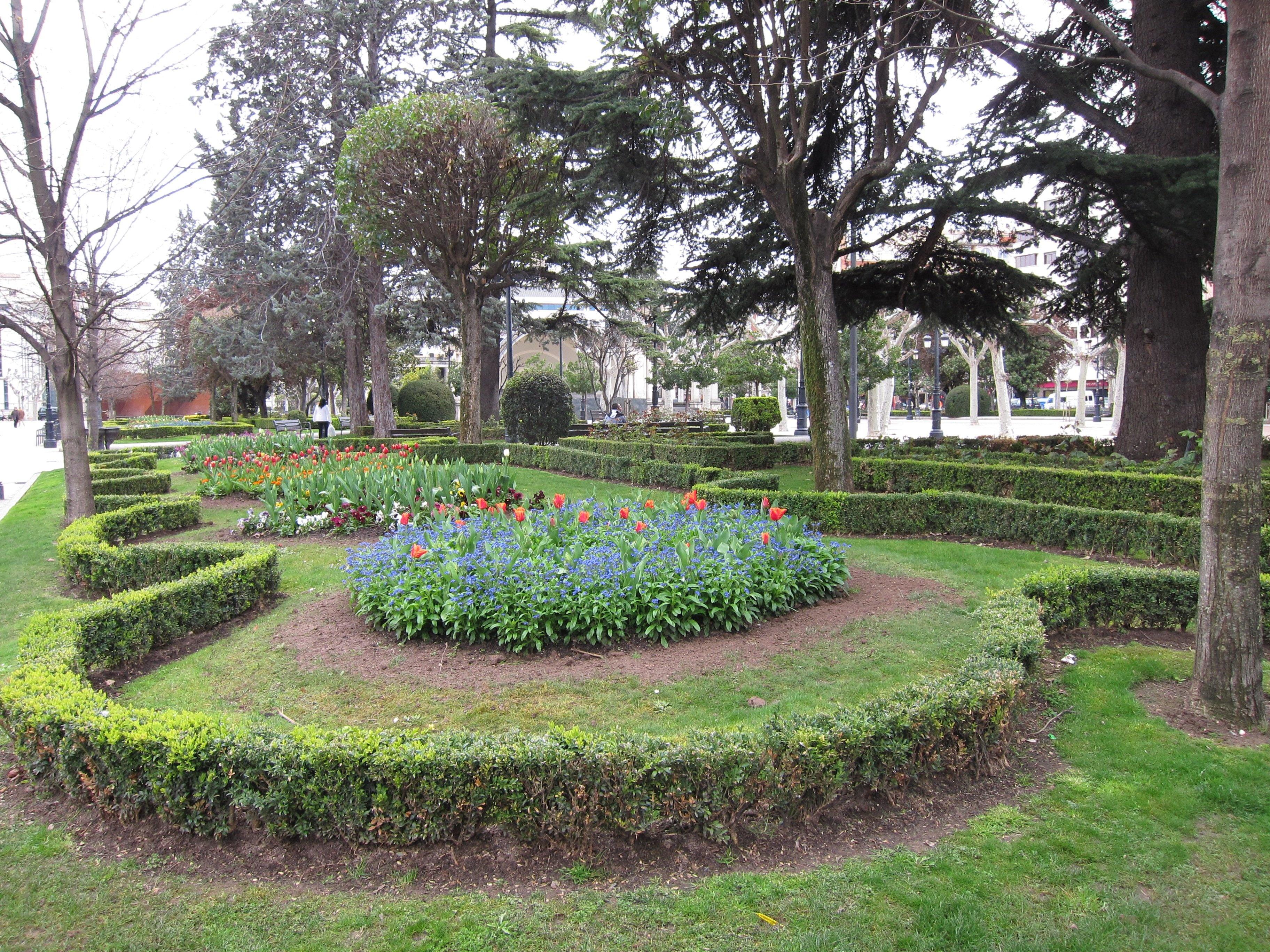 El Ayuntamiento contará este año con una normativa para el mantenimiento del arbolado y las zonas verdes de la ciudad