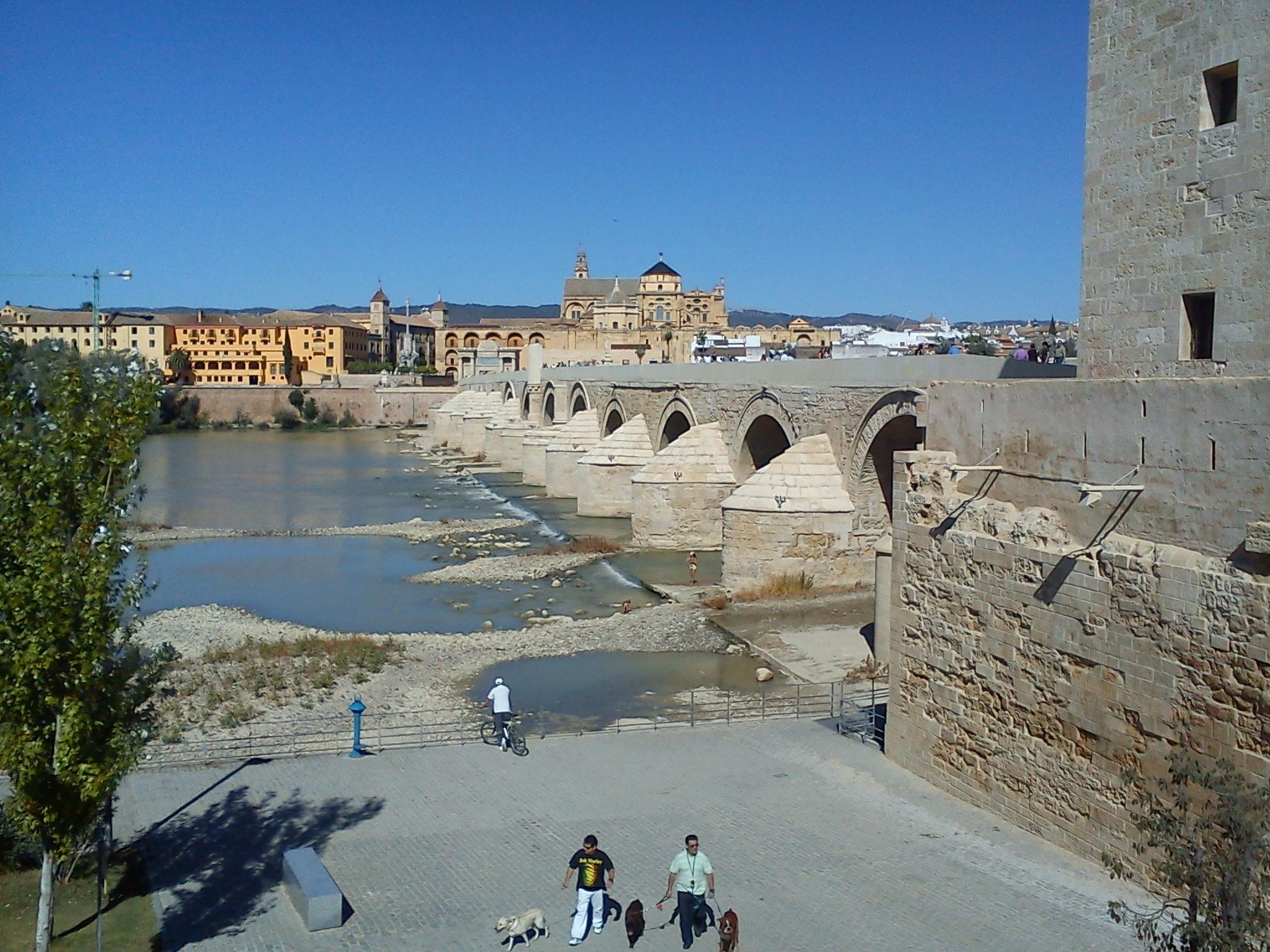 Córdoba, escenario para 33 proyectos audiovisuales este año