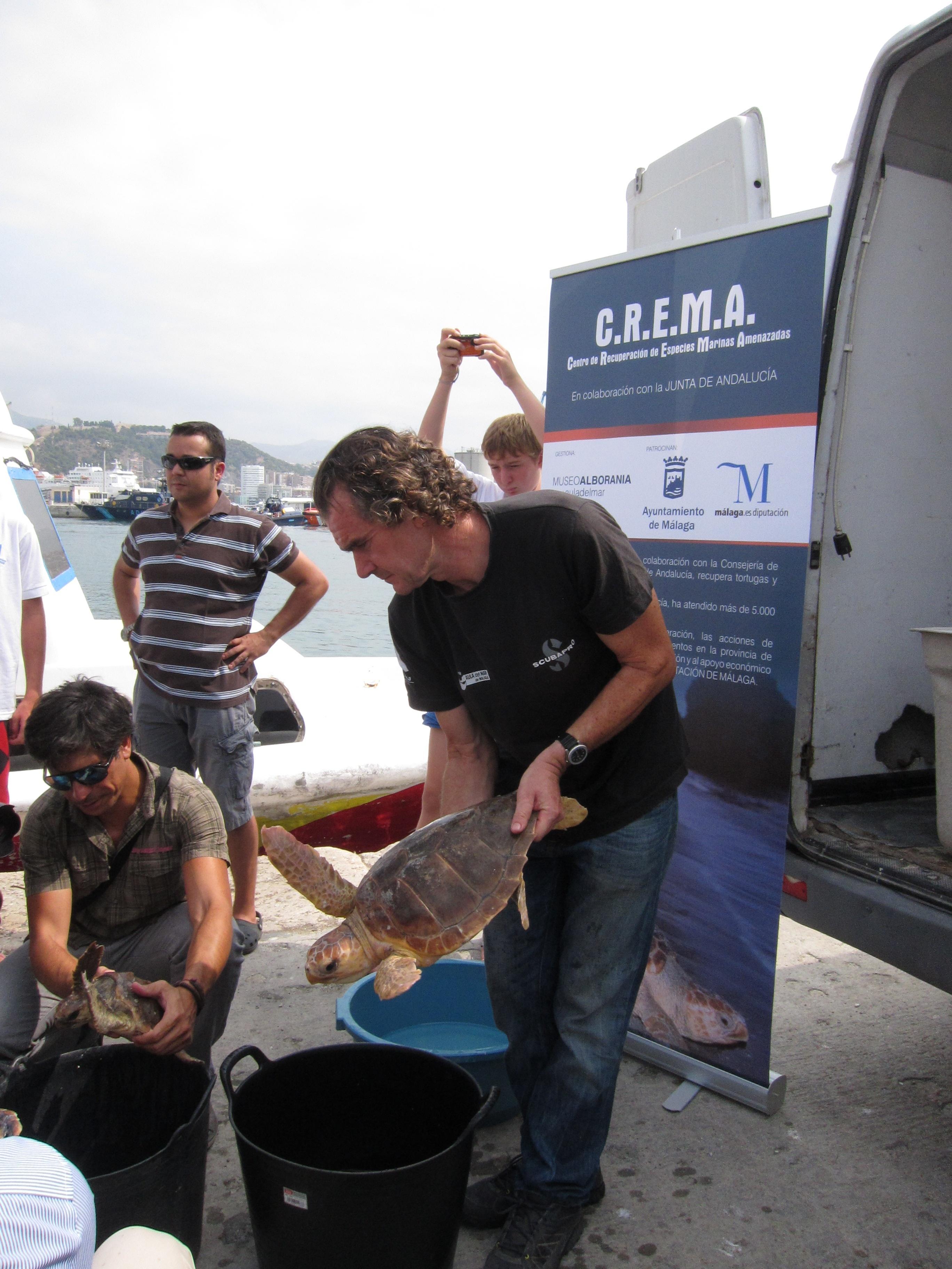 El Crema libera a 11 tortugas marinas a tres millas de la costa malagueña