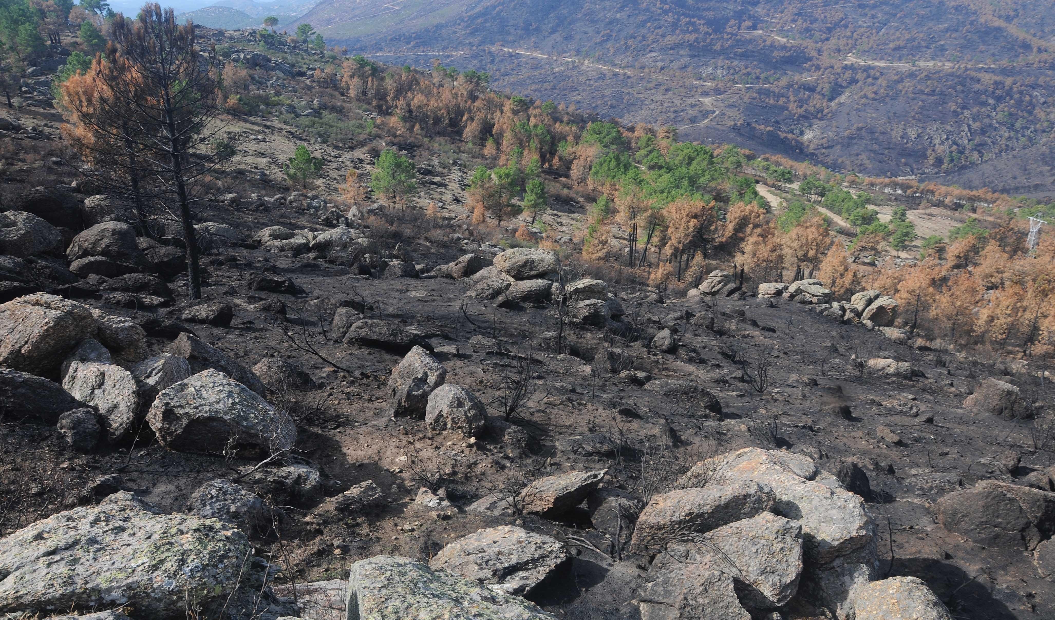 Se cumple un año del incendio de la sierra oeste, que arrasó casi 1.600 hectáreas