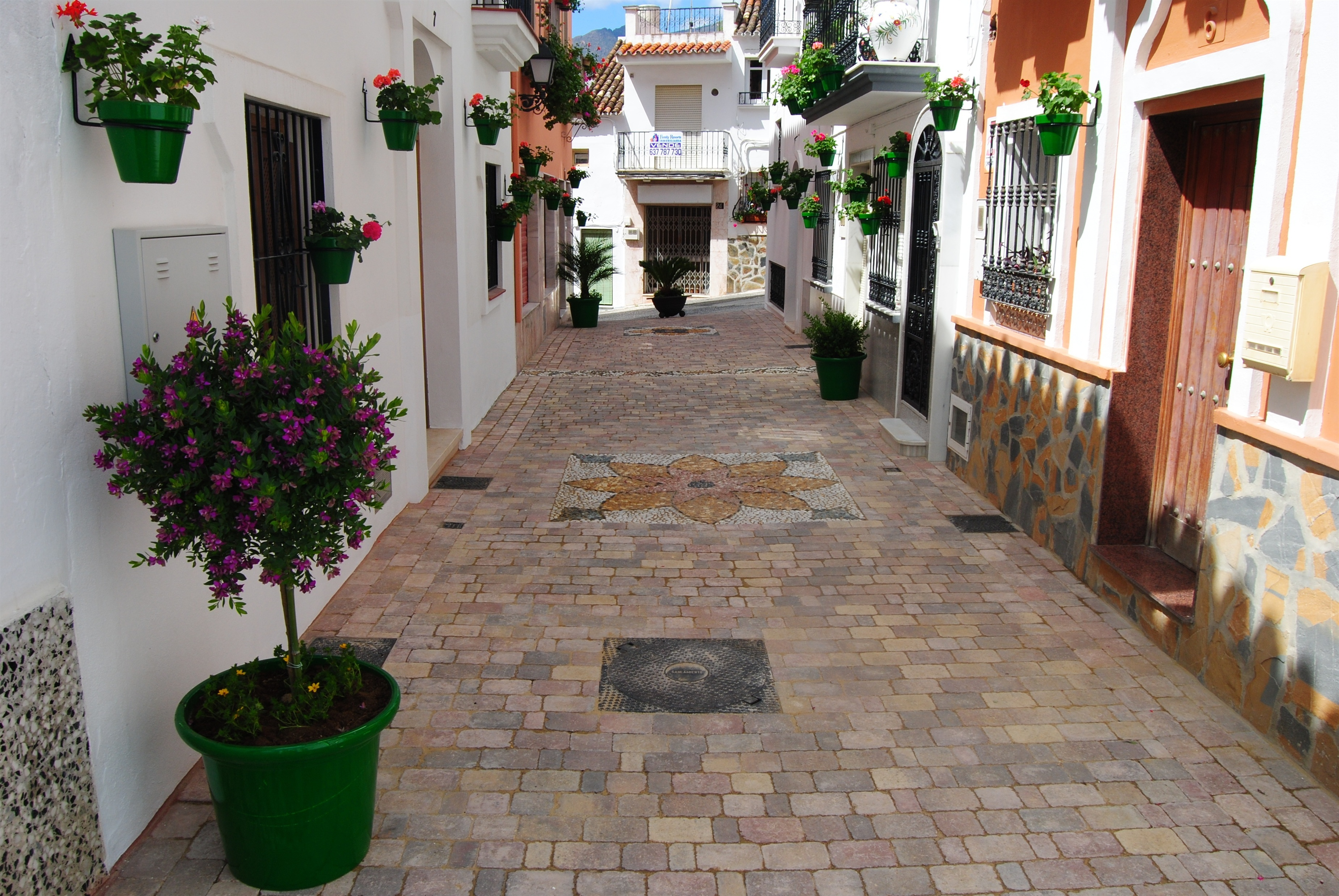 Aumenta un 70 por ciento el número de turistas que visitan Estepona en los primeros siete meses
