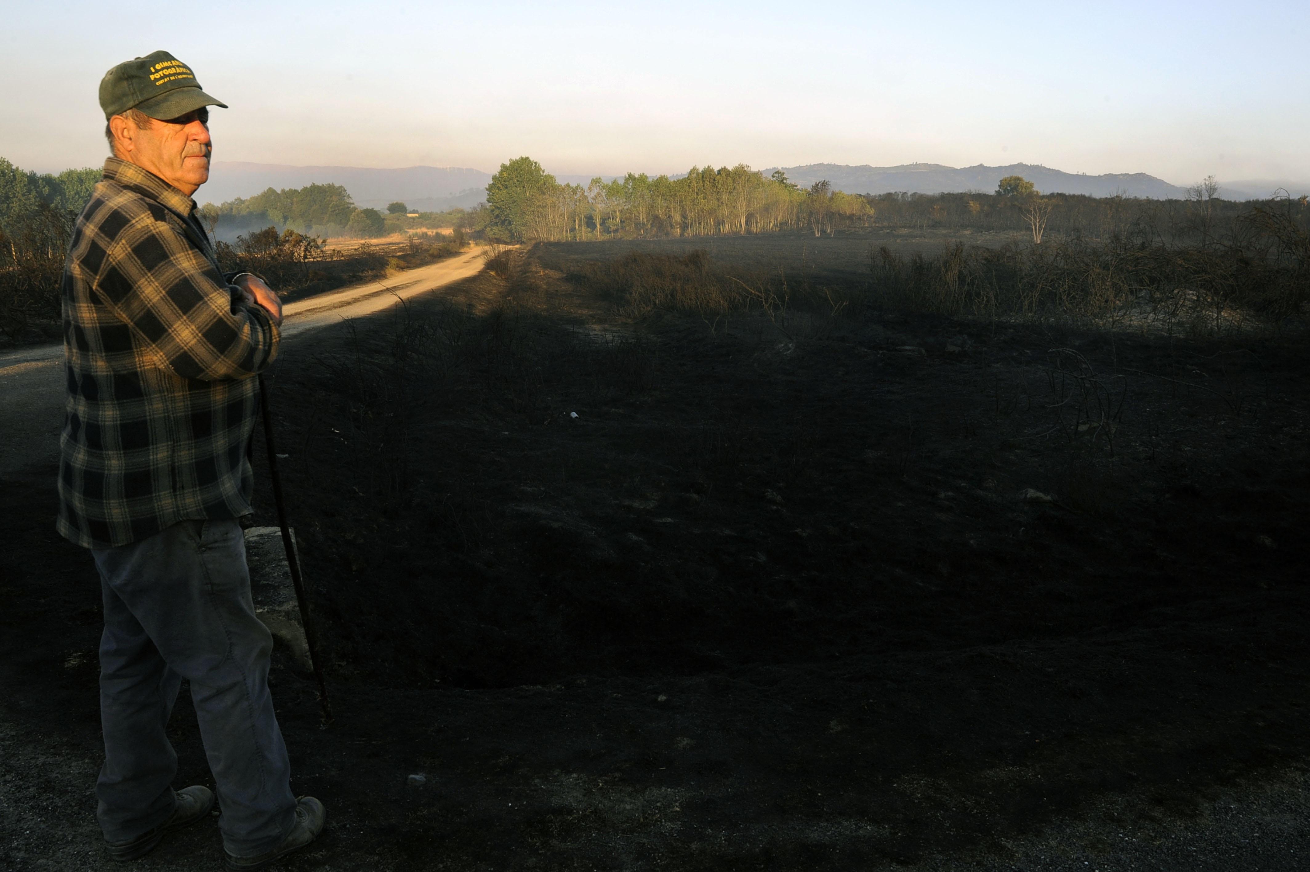 Cualedro y Monterrei piden al Gobierno central que les declare zona catastrófica por los daños de los incendios