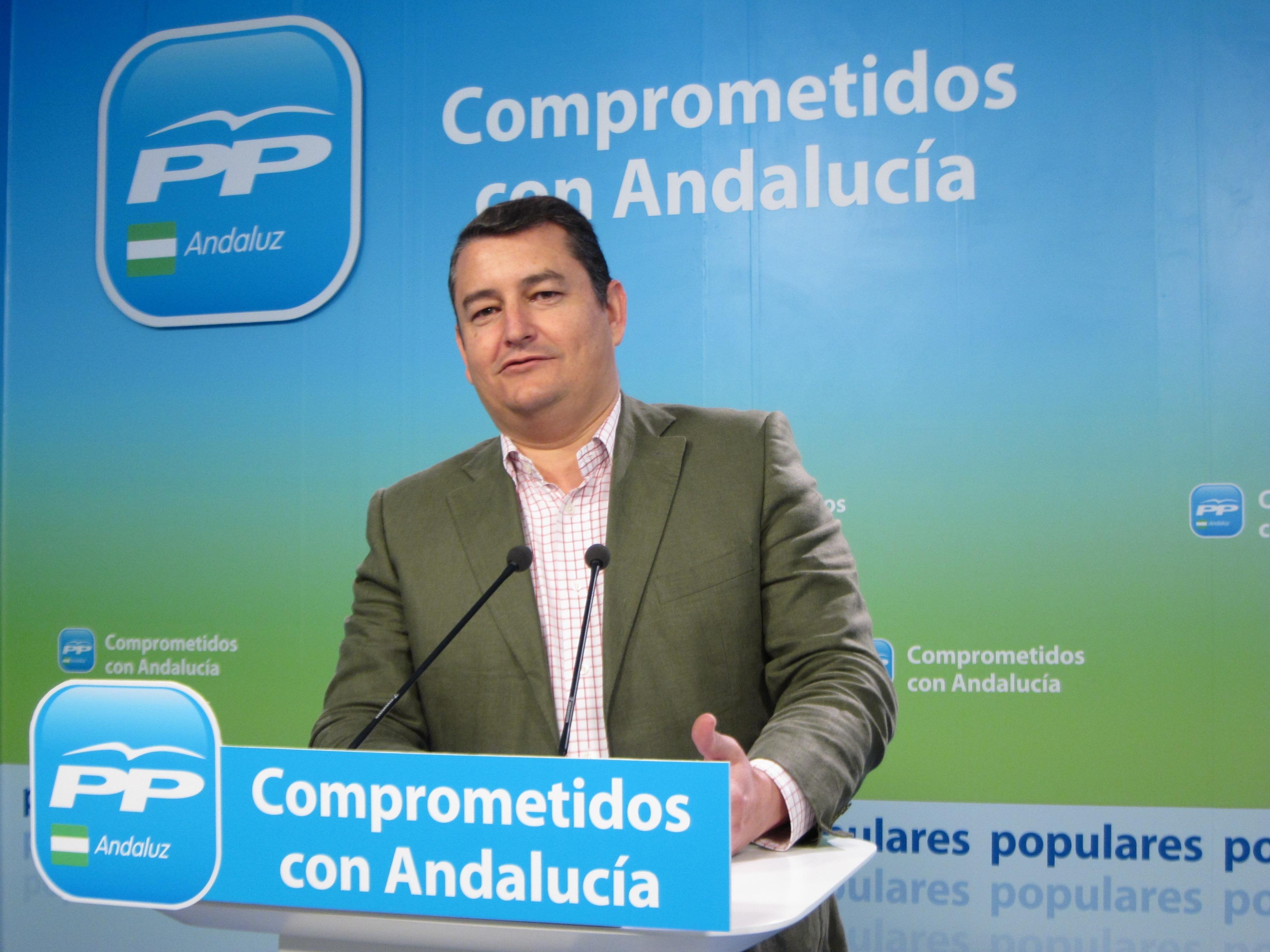 Sanz (PP) exige al PSOE que «deje de reírle las gracias a Picardo y se ponga al lado de España»