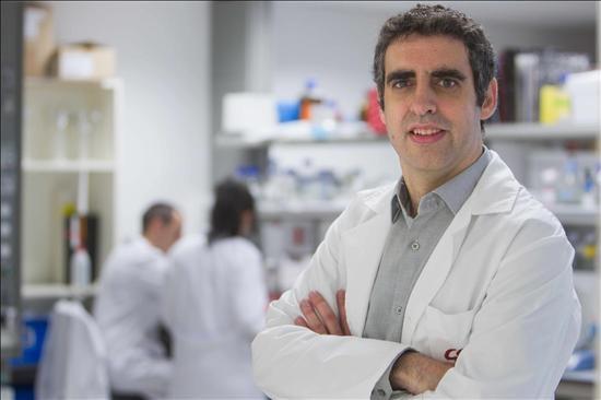 Hallan alteraciones epigenéticas en el cerebro de enfermos de Alzheimer