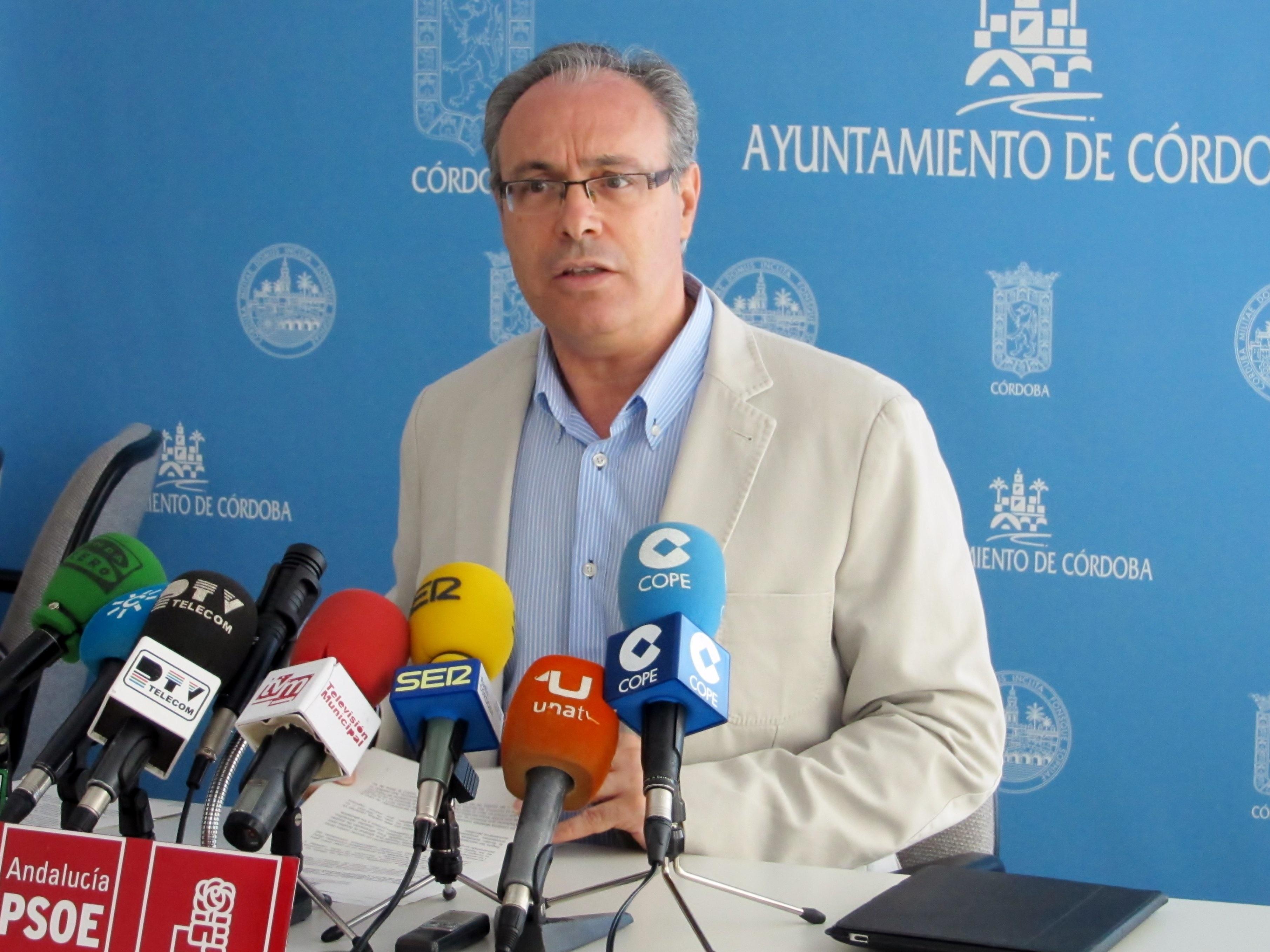 El PSOE pide la constitución de una comisión de seguimiento sobre el Puente del Arenal y el entorno del río