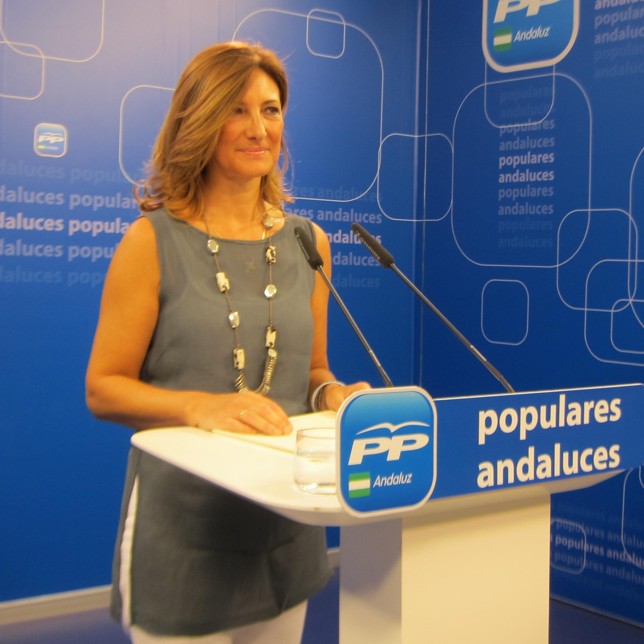 PP-A critica que Díaz acepte el «chantaje» de IULV-CA en el Parlamento y augura «muchas tensiones» en la legislatura