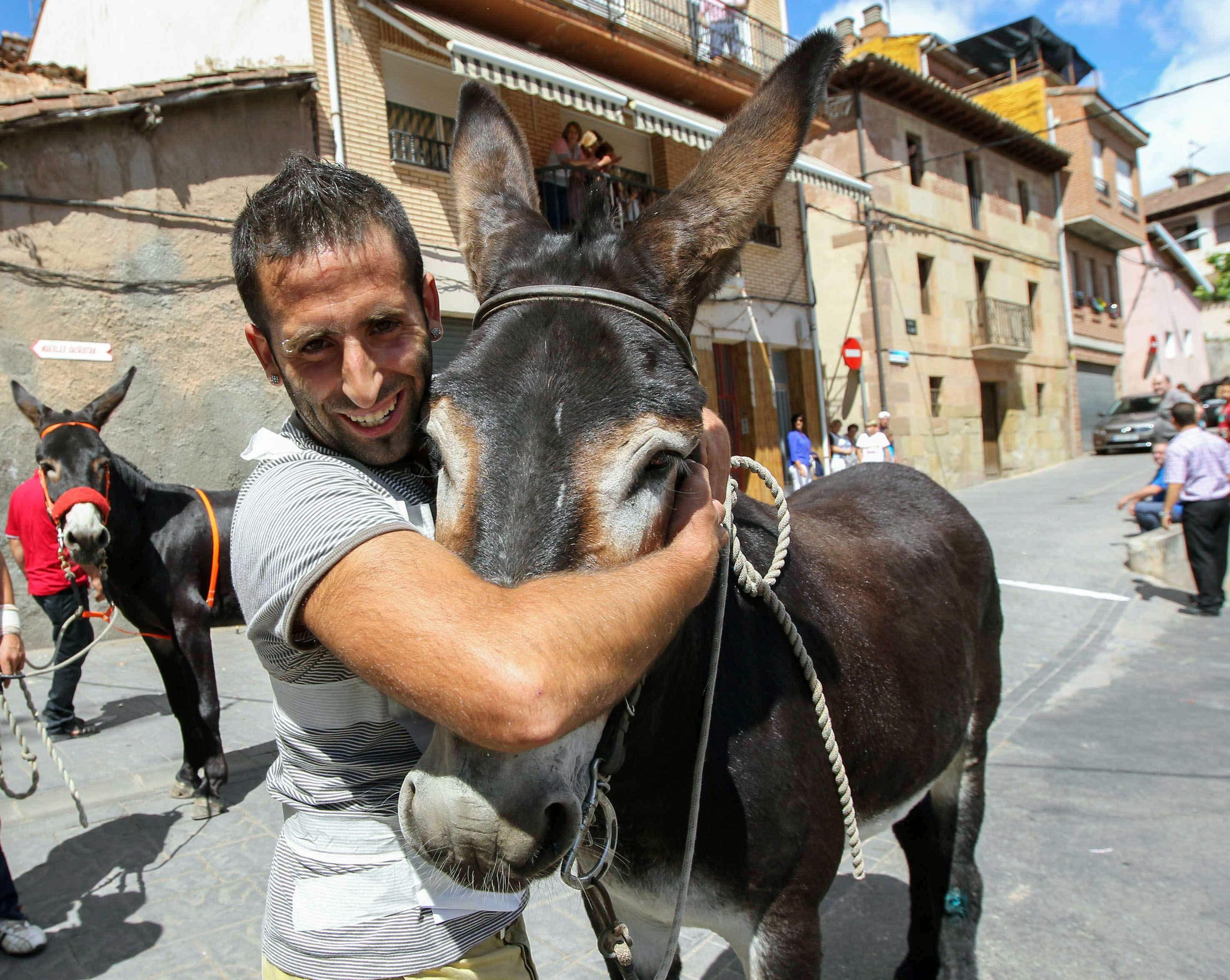 Un egipcio detenido por haber disfrazado de general a un burro