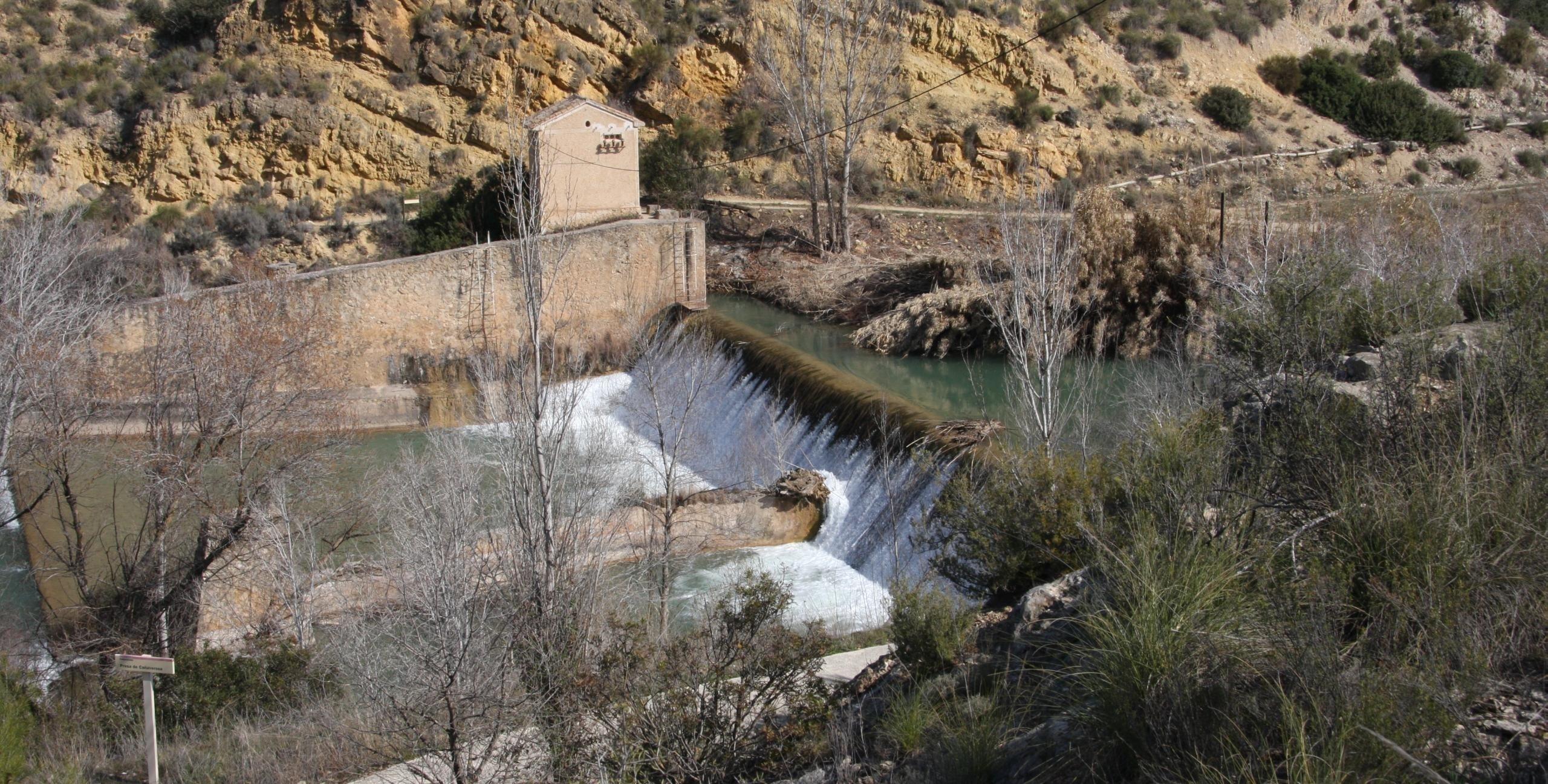 La CHS eliminará las barreras para peces en un tramo de 54 kilómetros del río Segura