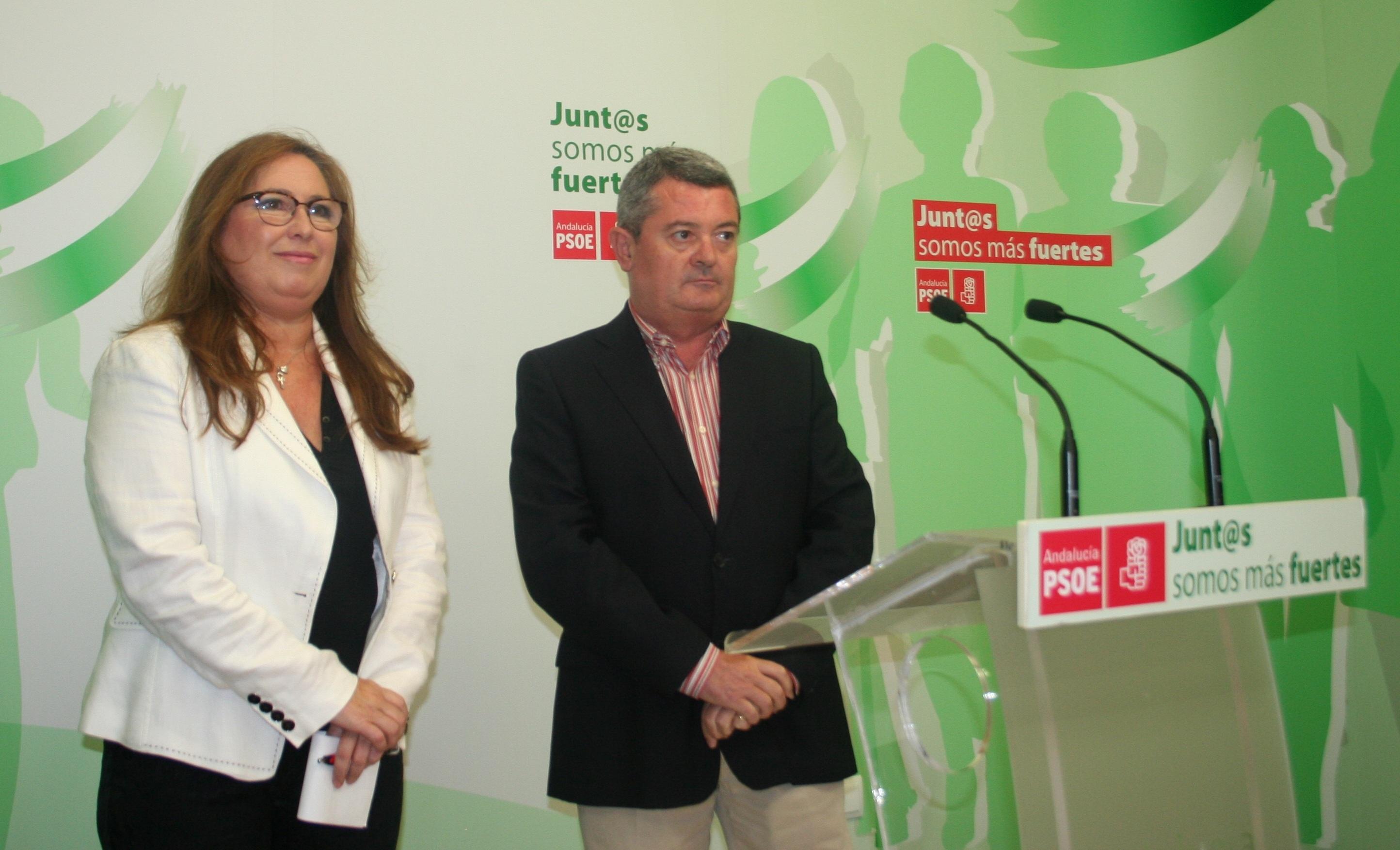El PSOE-A llevará una PNL al Parlamento andaluz para rechazar el copago de medicamentos hospitalarios