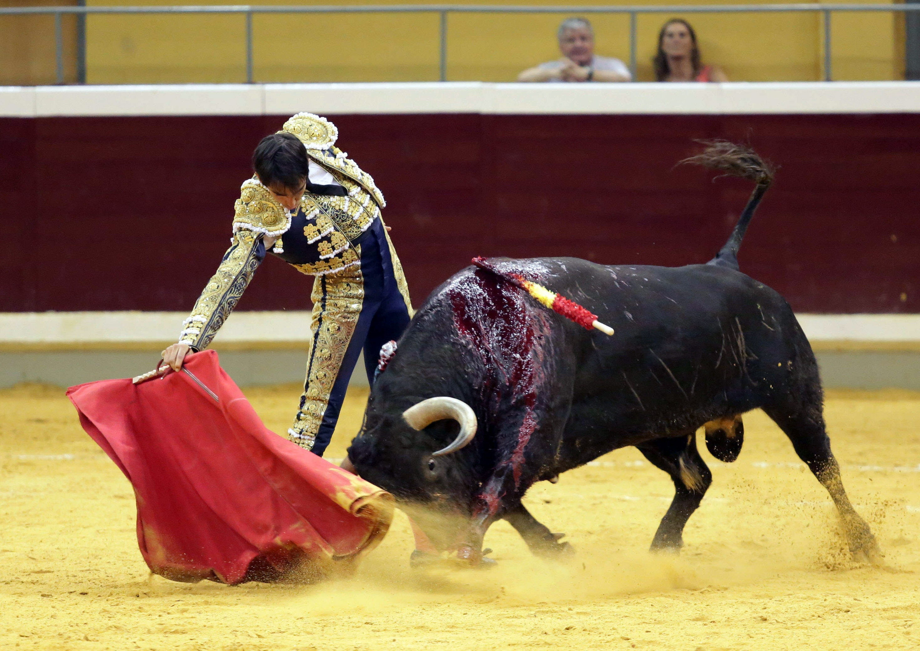 Ferrera y Urdiales, vueltas al ruedo en Logroño, y tarde triunfal en Algemesí