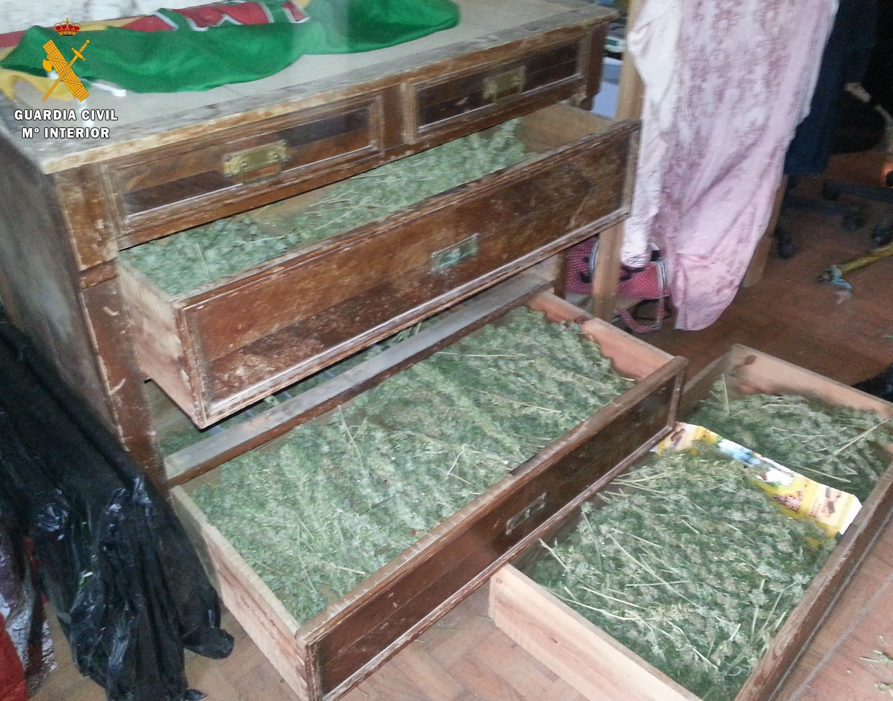 La Guardia Civil de Benabarre encuentra plantaciones de marihuana en cuatro huertos