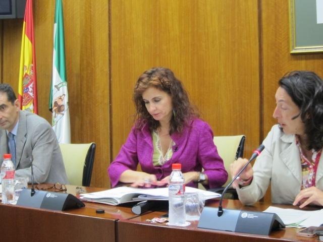 Junta andaluz cumplirá objetivo de déficit en los presupuestos de 2014, pero «peleará por obtener décimas adicionales»