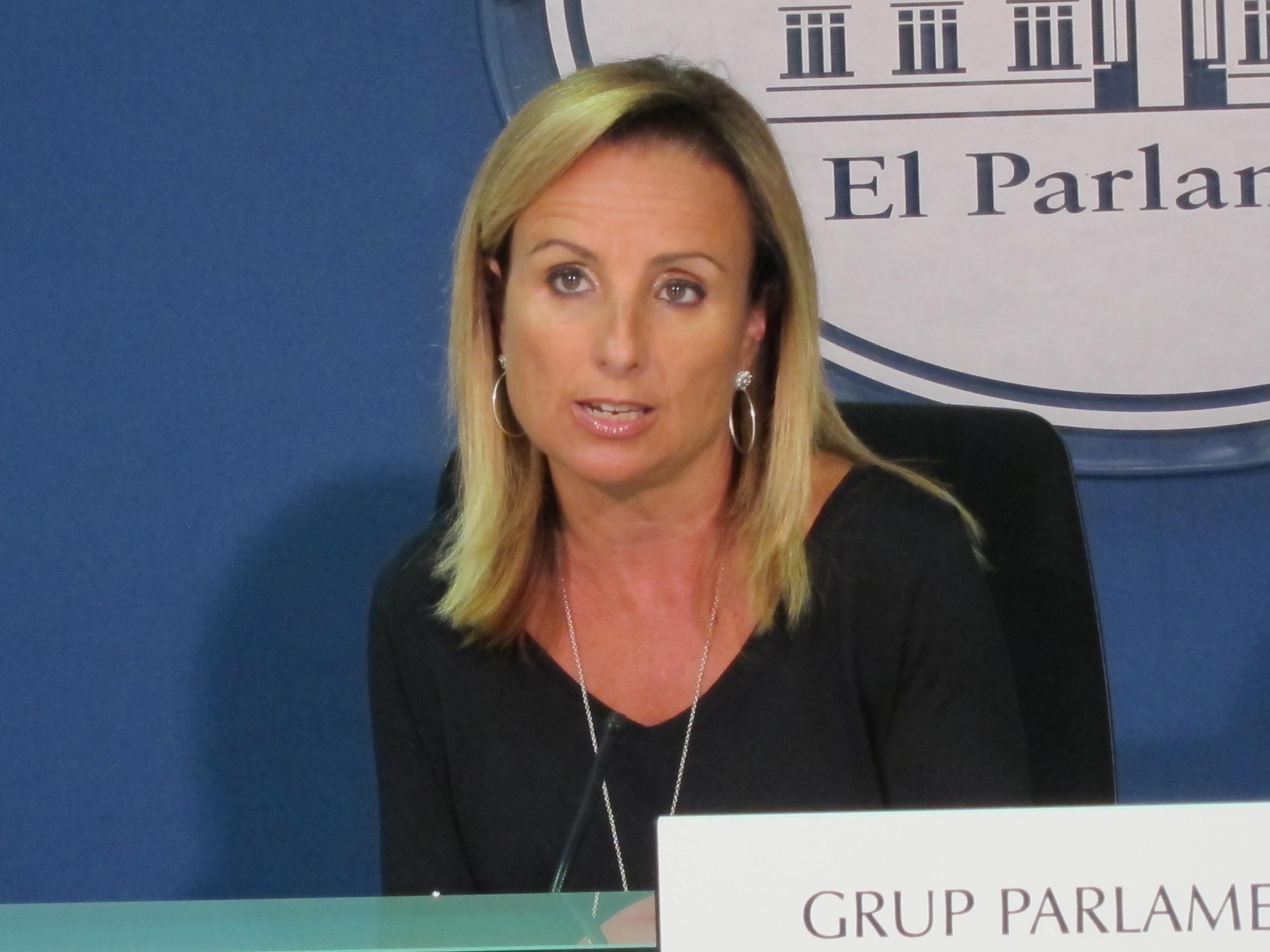 El PP dice que el auto del TSJ de Baleares «reitera la legalidad del TIL»